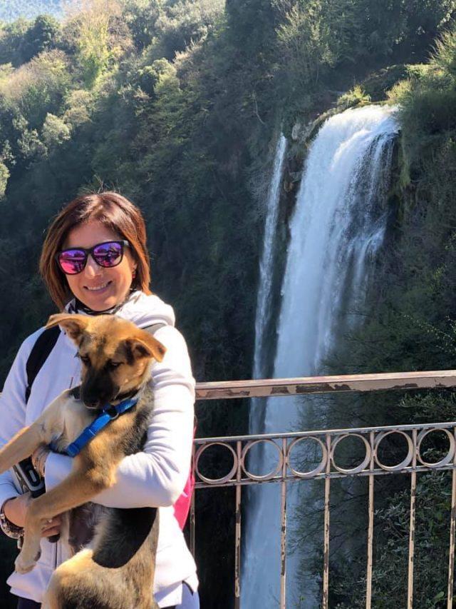 viaggiare con il cane, indispensabili in viaggio col cane, trevaligie