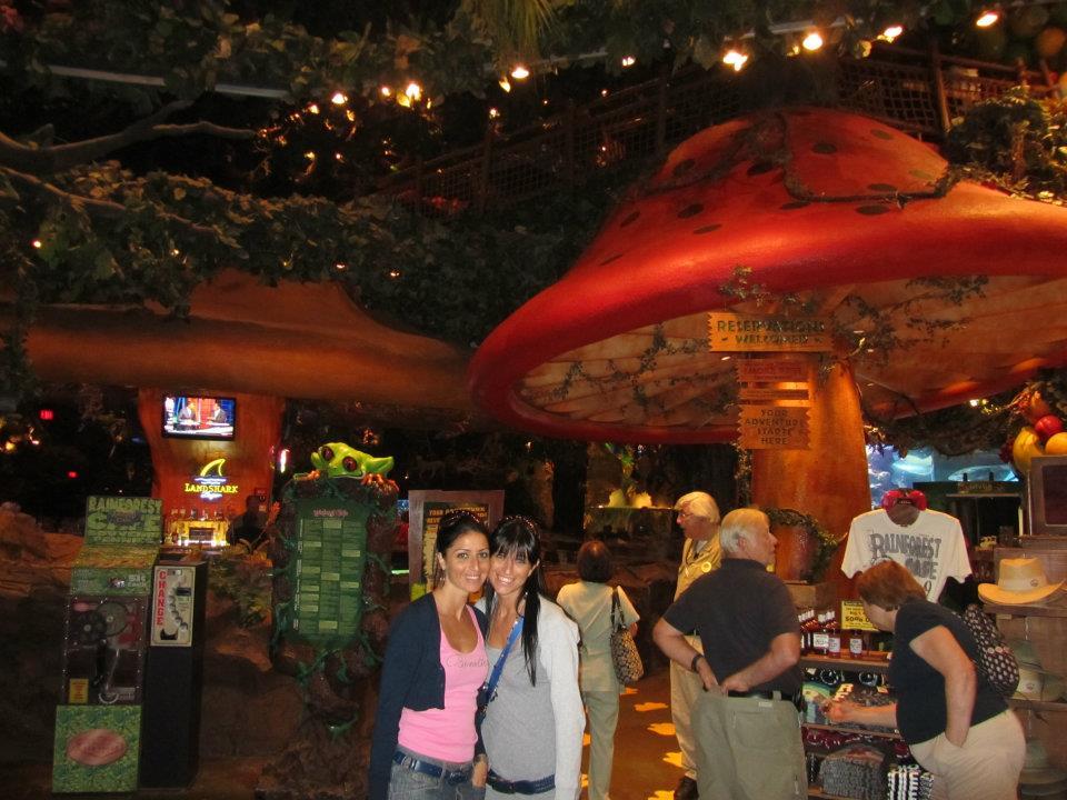 A Las Vegas non farti mancare una passeggiata nei vari hotel tematici. Qui siamo al Rainforest...un ristorante davvero meraviglioso.