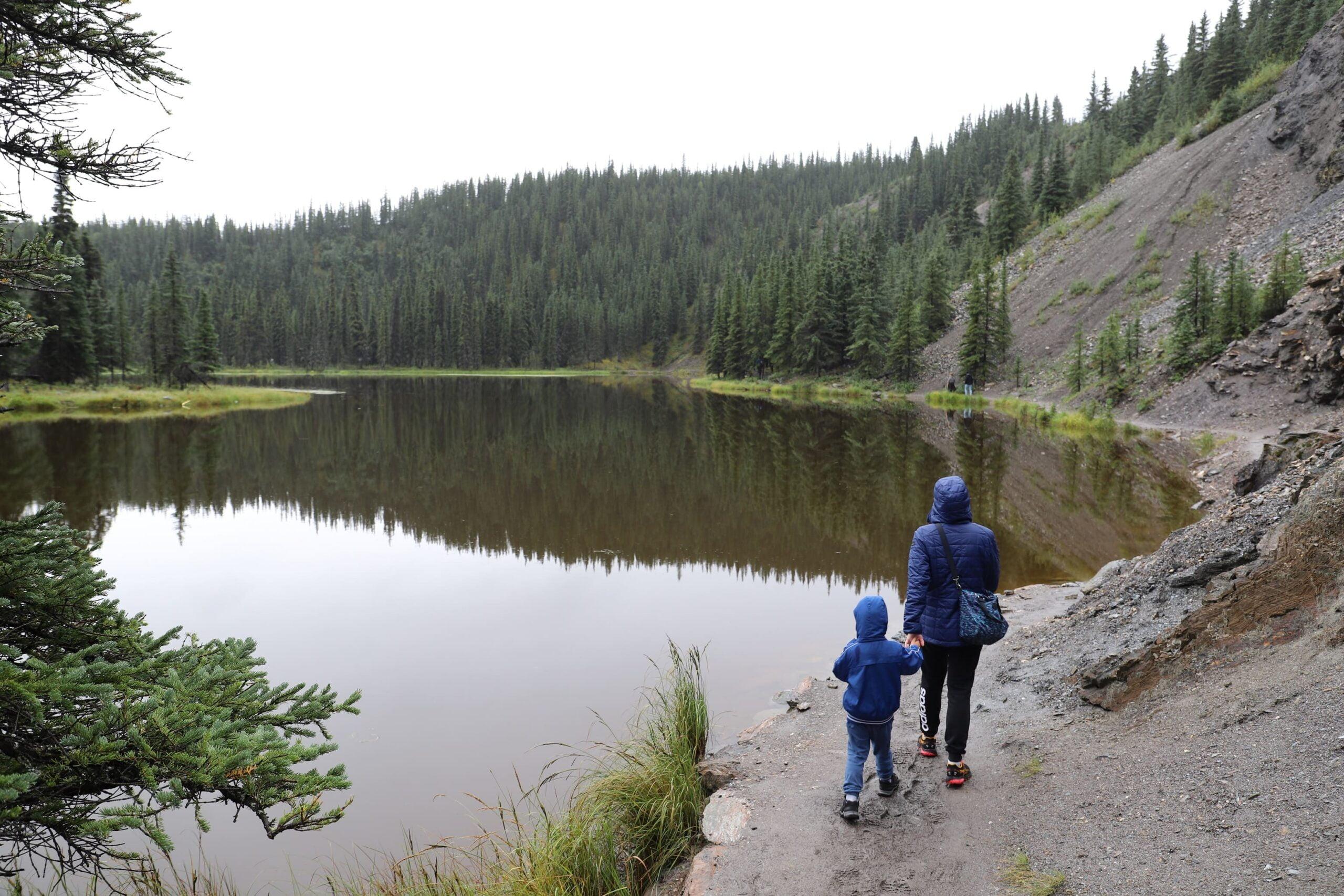 """Daniela e la sua famiglia hanno intrapreso un road trip meraviglioso in. Alaska. Il suo consiglio: """" I prezzi in Alaska sono molto elevati, noi abbiamo dormito spesso in ostelli, campeggi, piccoli cottage. Quasi sempre con il bagno in comune. Una soluzione che spesso spaventa chi viaggia con bambini, ma noi non abbiamo mai avuto problemi."""""""